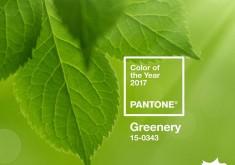 Greenery – Sắc màu tươi mới cho năm 2017