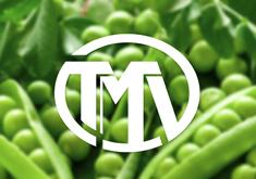 Thiết kế logo thương hiệu Nông sản TMV